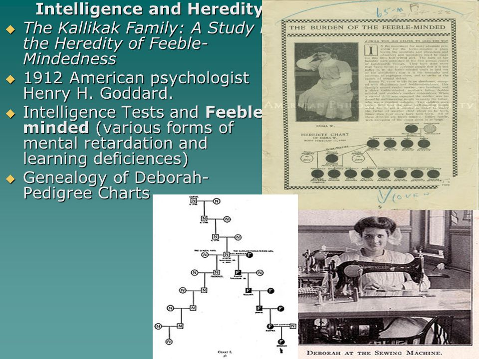 Intelligence and Heredity  The Kallikak Family: A Study in the Heredity of Feeble- Mindedness  1912 American psychologist Henry H. Goddard.  Intell