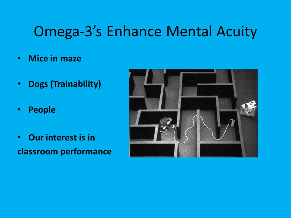 Omega-3's Enhance Mental Acuity Mice in maze Dogs (Trainability) People Our interest is in classroom performance