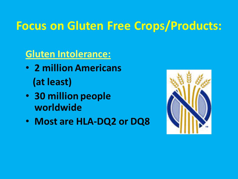 Focus on Gluten Free Crops/Products: Gluten Intolerance: 2 million Americans (at least) 30 million people worldwide Most are HLA-DQ2 or DQ8