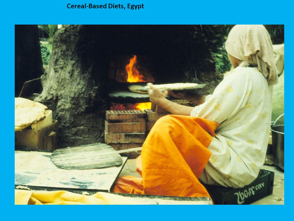Cereal-Based Diets, Egypt