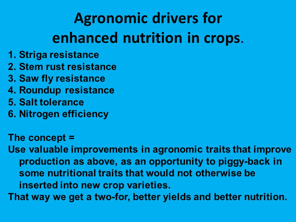 Agronomic drivers for enhanced nutrition in crops. 1.Striga resistance 2.Stem rust resistance 3.Saw fly resistance 4.Roundup resistance 5.Salt toleran