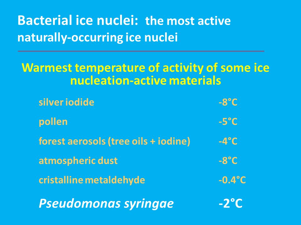 Bacterial ice nuclei: the most active naturally-occurring ice nuclei Warmest temperature of activity of some ice nucleation-active materials silver iodide-8°C pollen-5°C forest aerosols (tree oils + iodine)-4°C atmospheric dust-8°C cristalline metaldehyde-0.4°C Pseudomonas syringae-2°C