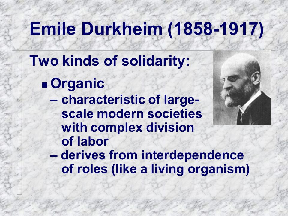 Emile Durkheim (1858-1917) Two kinds of solidarity: Organic –characteristic of large- scale modern societies with complex division of labor – derives from interdependence of roles (like a living organism)