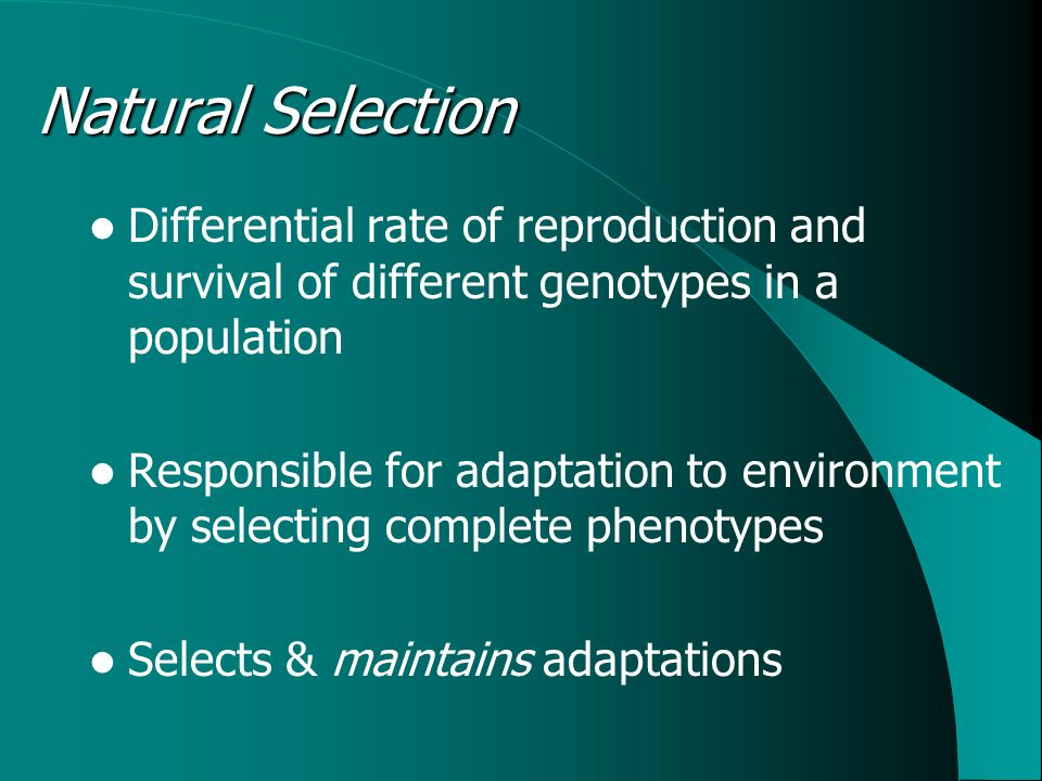 Natural Selection Differential rate of reproduction and survival of different genotypes in a population Responsible for adaptation to environment by selecting complete phenotypes Selects & maintains adaptations
