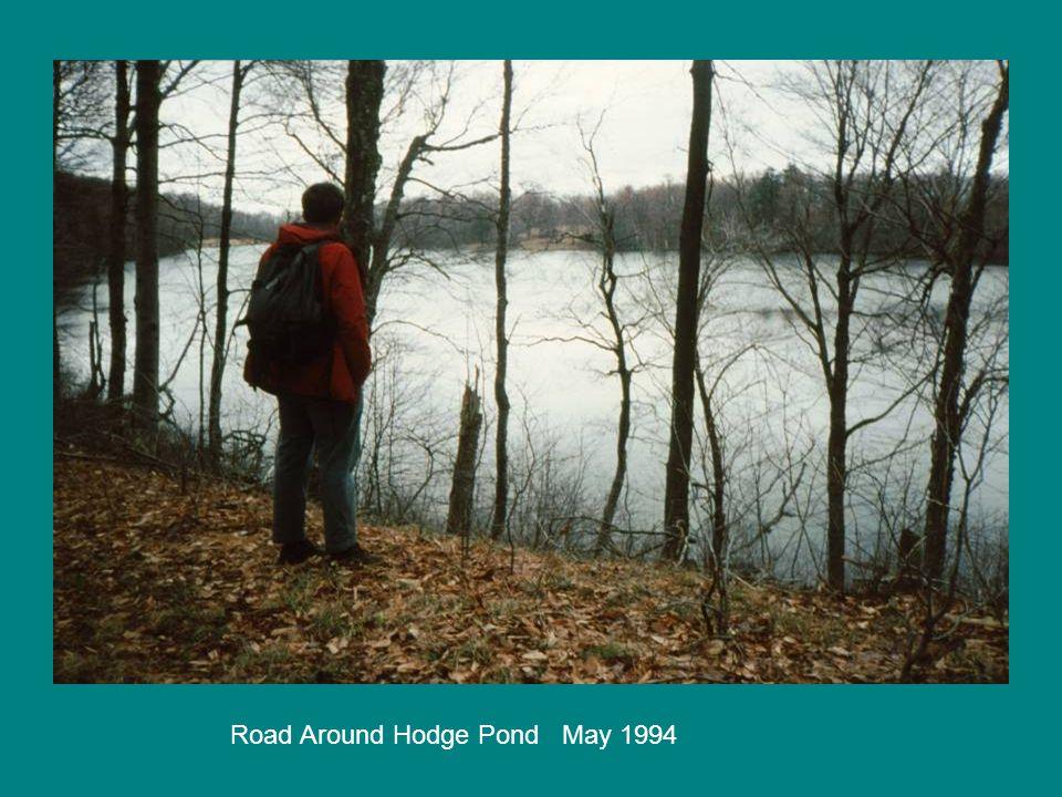 Road Around Hodge Pond May 1994