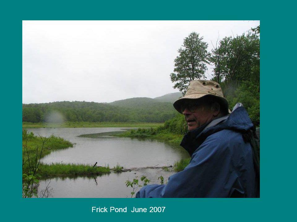 Frick Pond June 2007