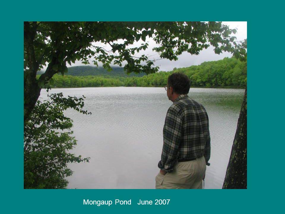 Mongaup Pond June 2007