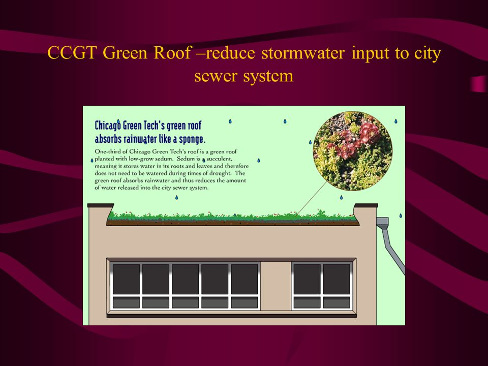 CCGT Green Roof –reduce stormwater input to city sewer system