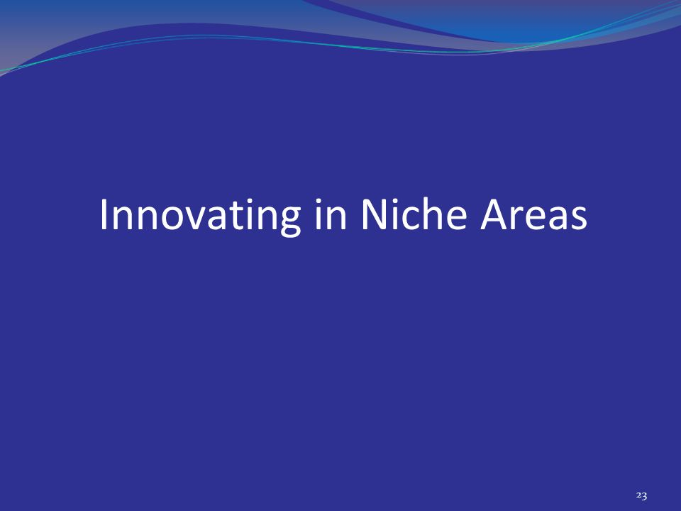 Innovating in Niche Areas 23