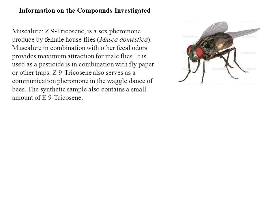 Muscalure: Z 9-Tricosene, is a sex pheromone produce by female house flies (Musca domestica).