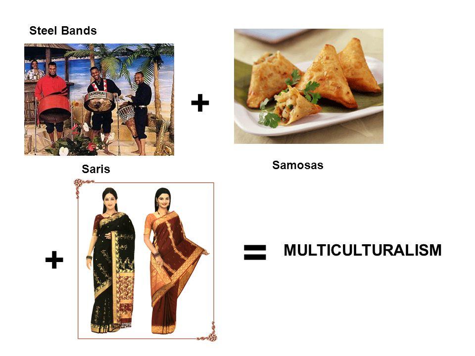+ + = MULTICULTURALISM Steel Bands Samosas Saris