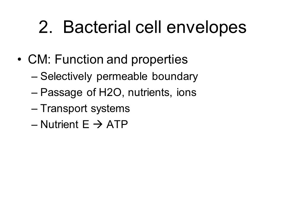 2. Bacterial cell envelopes CM: Function and properties –Selectively permeable boundary –Passage of H2O, nutrients, ions –Transport systems –Nutrient