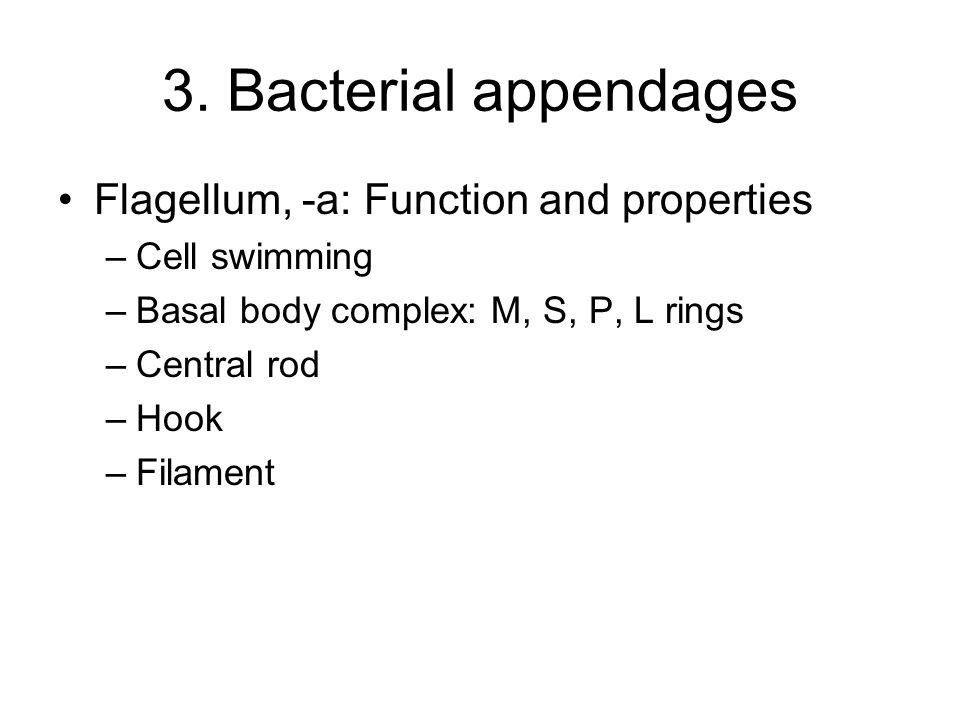 3. Bacterial appendages Flagellum, -a: Function and properties –Cell swimming –Basal body complex: M, S, P, L rings –Central rod –Hook –Filament