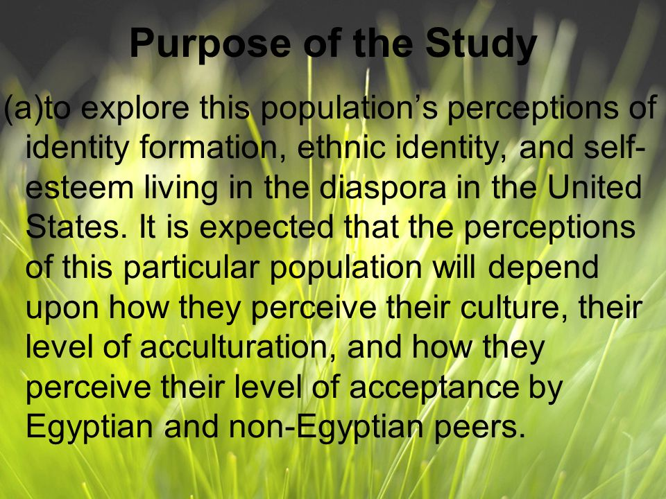 Purpose of the Study (a)to explore this population's perceptions of identity formation, ethnic identity, and self- esteem living in the diaspora in the United States.