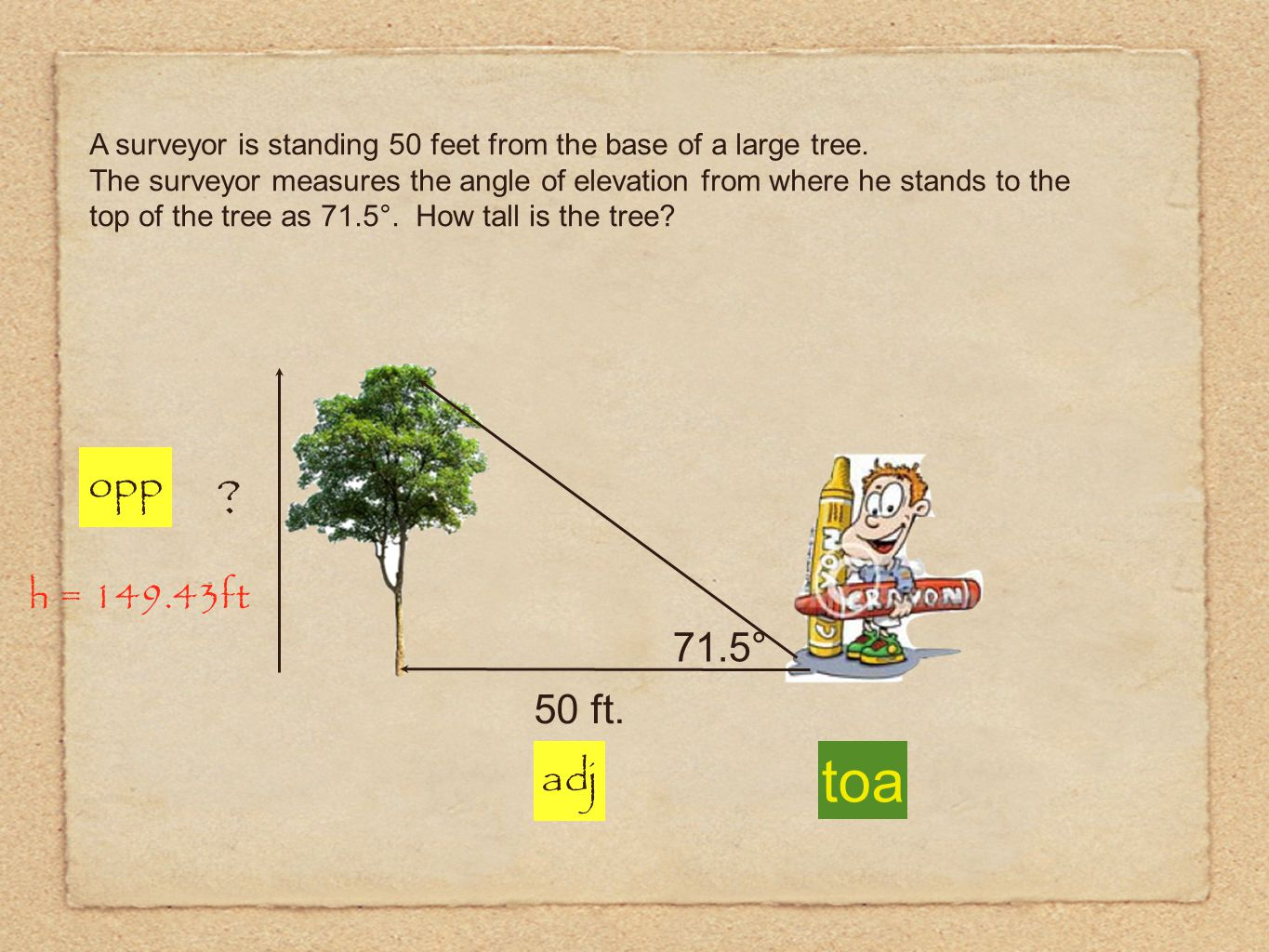A surveyor is standing 50 feet from the base of a large tree. The surveyor measures the angle of elevation from where he stands to the top of the tree