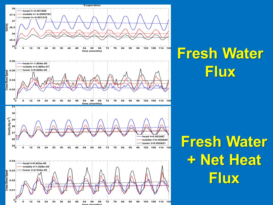 Fresh Water + Net Heat Flux Fresh Water Flux
