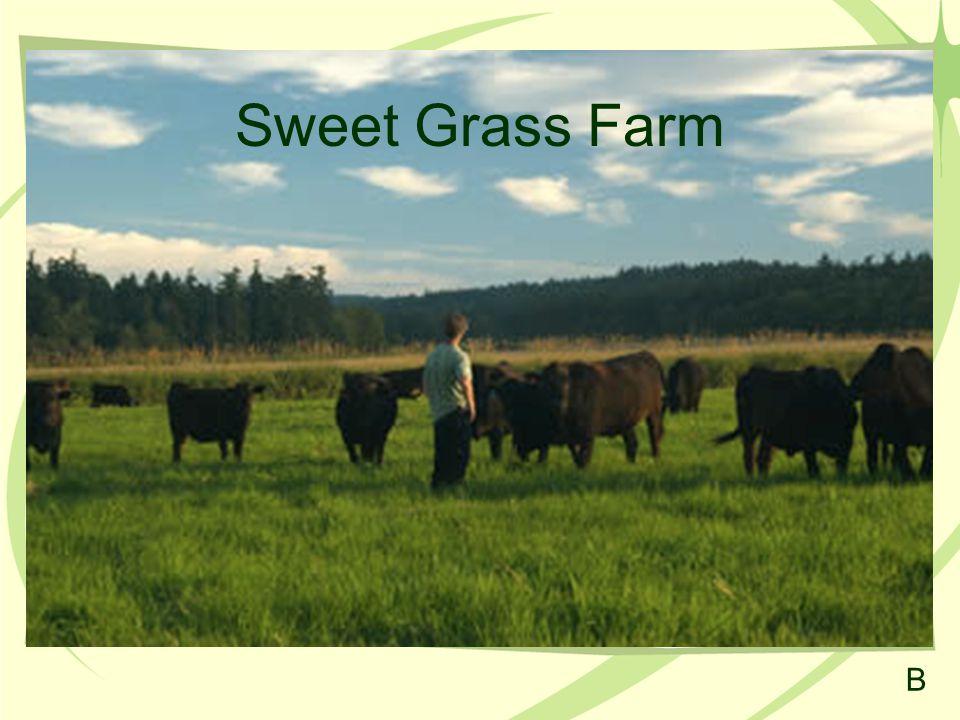 Sweet Grass Farm B