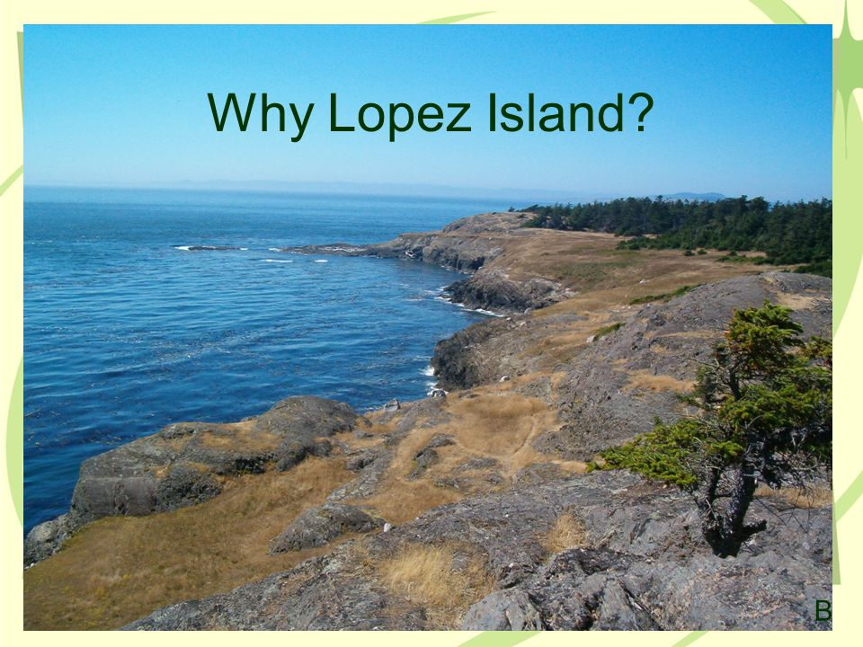 Why Lopez Island? B