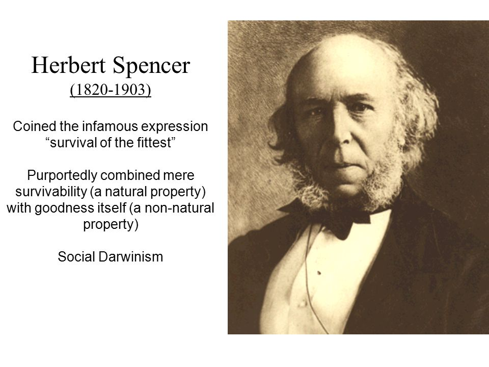 Herbert Spencer (1820-1903) Coined the infamous expression survival of the fittest Purportedly combined mere survivability (a natural property) with goodness itself (a non-natural property) Social Darwinism