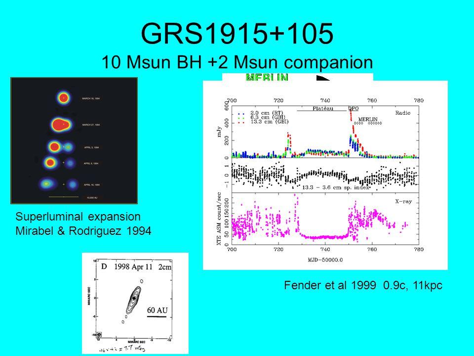 GRS1915+105 10 Msun BH +2 Msun companion Superluminal expansion Mirabel & Rodriguez 1994 Fender et al 1999 0.9c, 11kpc