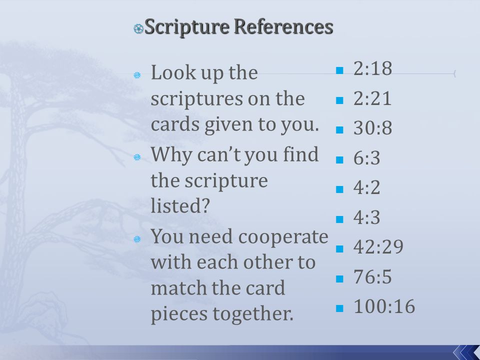  Look up the scriptures on the cards given to you.