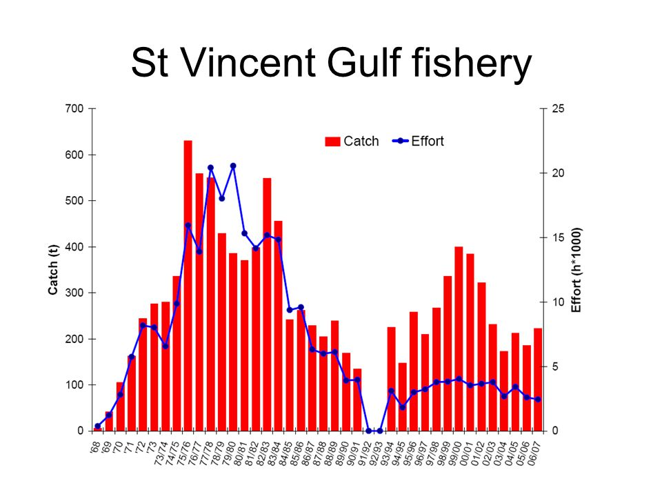 St Vincent Gulf fishery