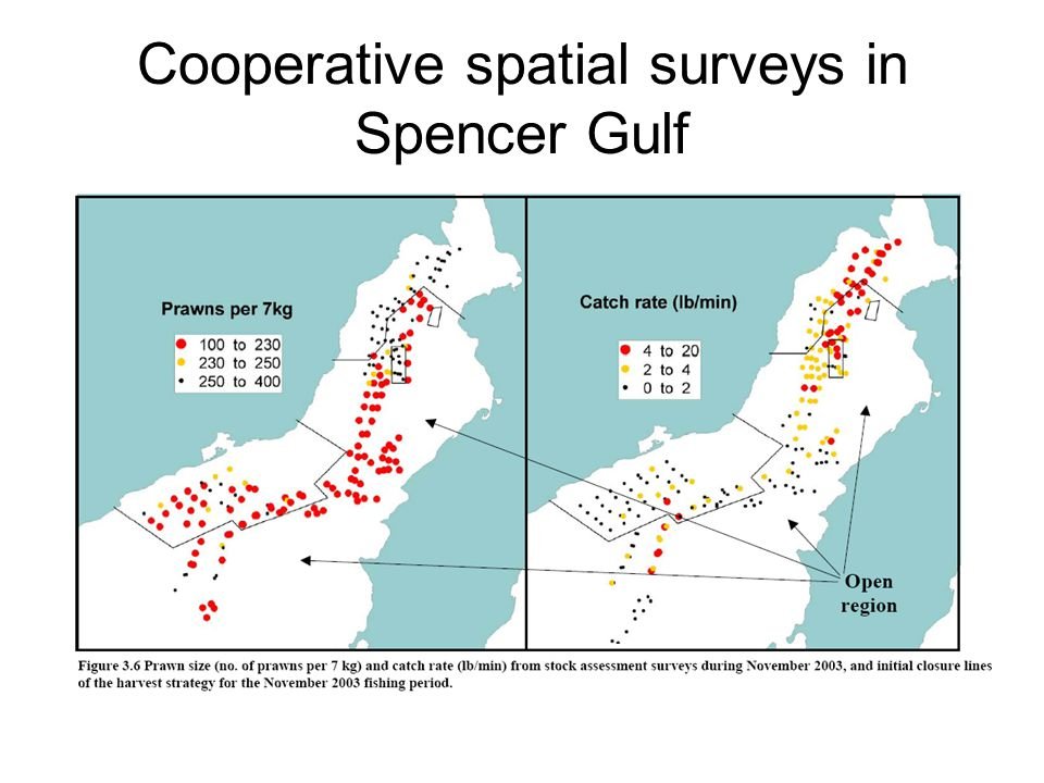 Cooperative spatial surveys in Spencer Gulf