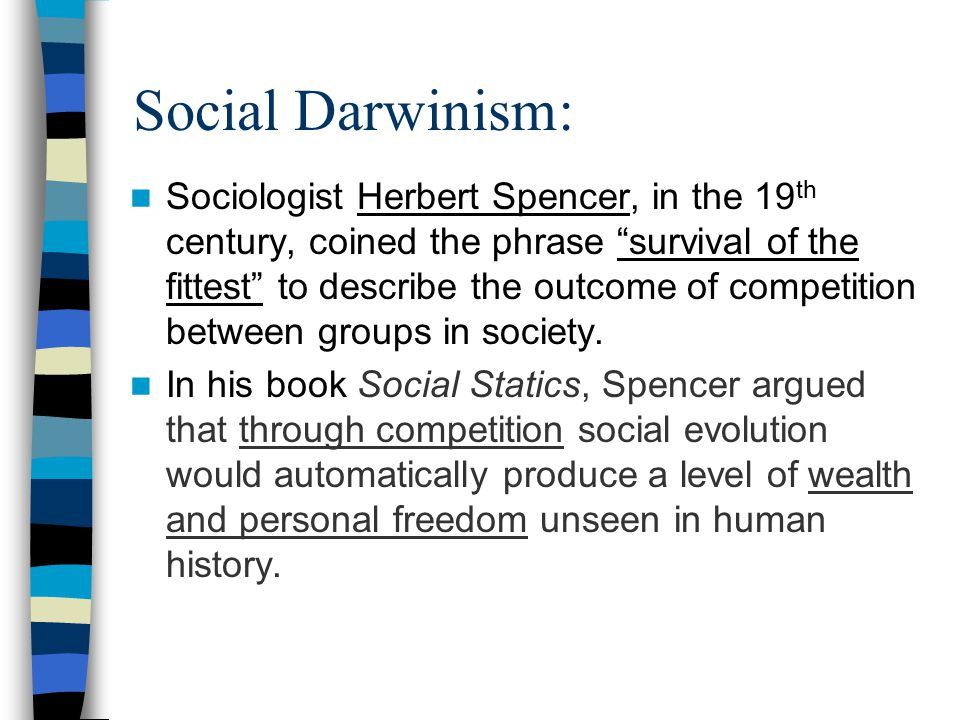 What is Social Darwinism.