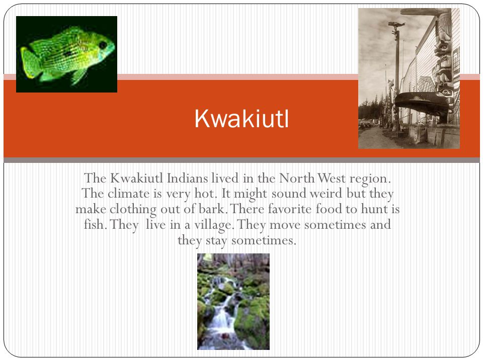 Kwakiutl The Kwakiutl Indians lived in the North West region. The climate is very hot. It might sound weird but they make clothing out of bark. There