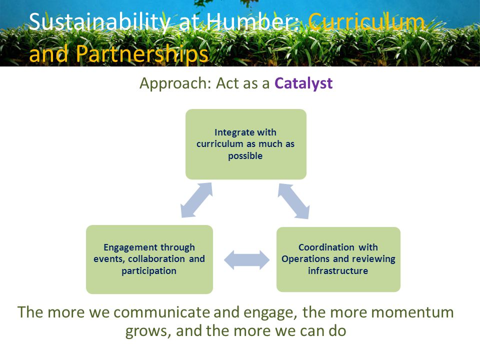 Sustainability at Humber: Curriculum and Partnerships Approach: Act as a Catalyst The more we communicate and engage, the more momentum grows, and the
