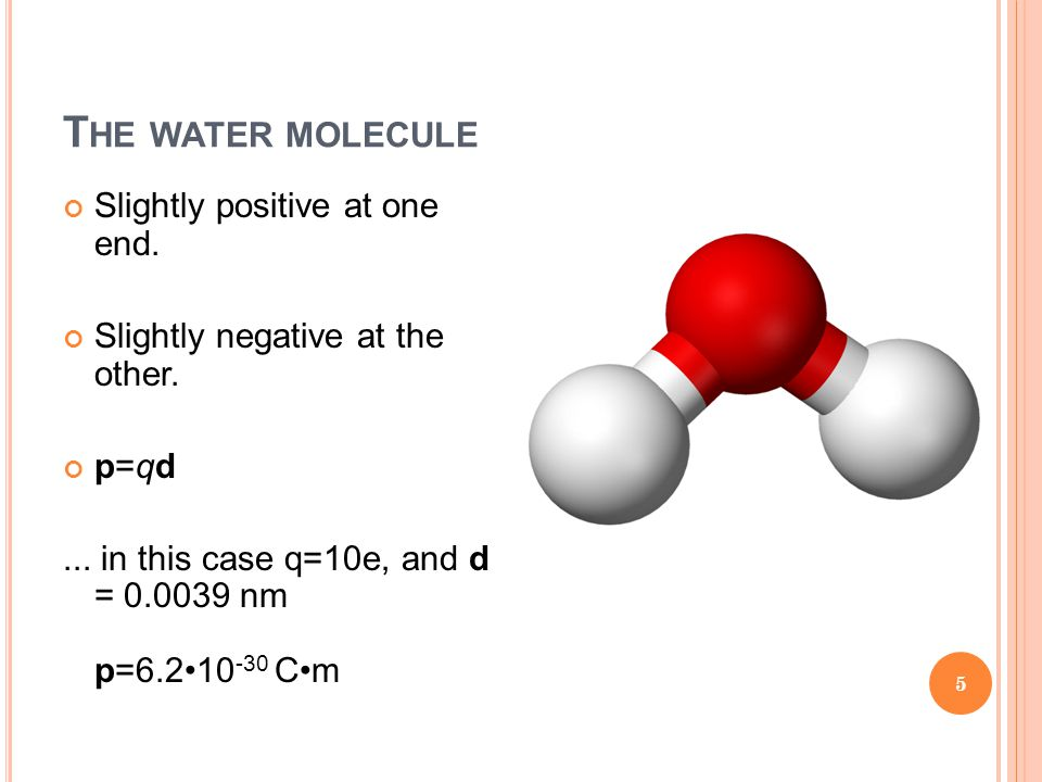T HE WATER MOLECULE Slightly positive at one end. Slightly negative at the other. p=qd... in this case q=10e, and d = 0.0039 nm p=6.210 -30 Cm 5