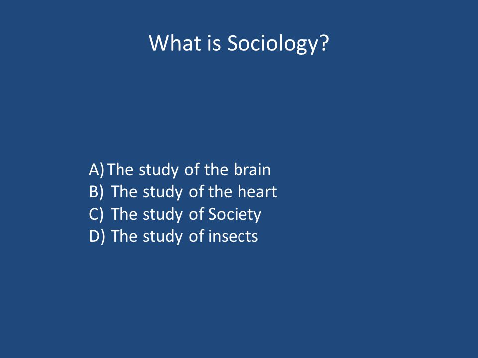 What is Sociology.