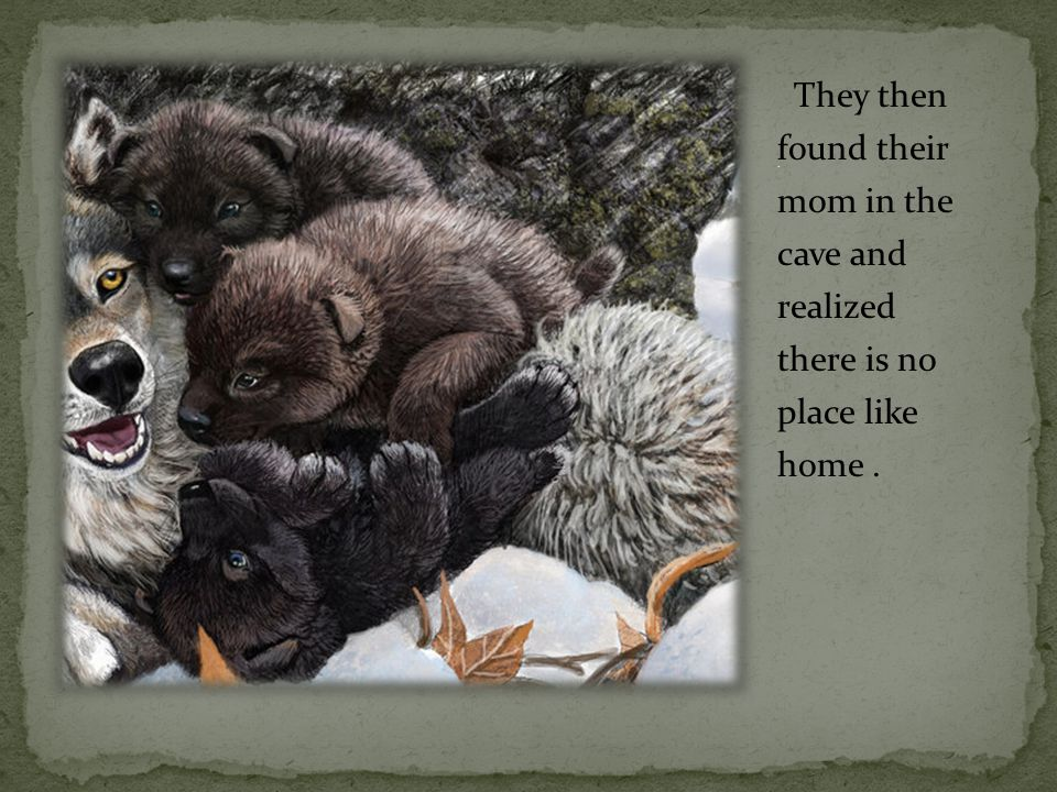 They then found their mom in the cave and realized there is no place like home.