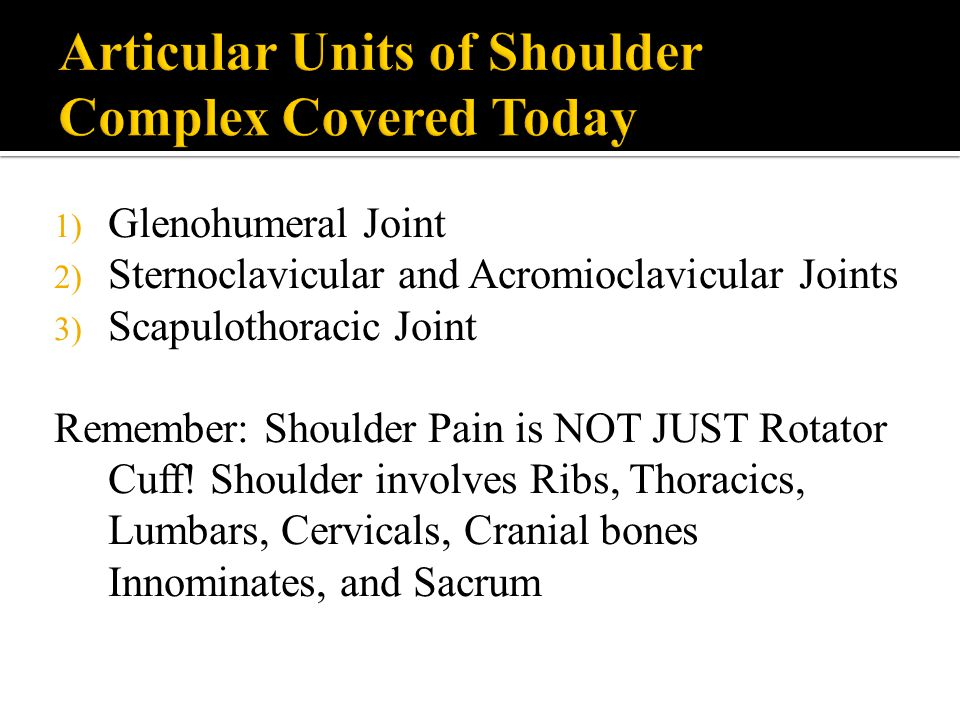1) Glenohumeral Joint 2) Sternoclavicular and Acromioclavicular Joints 3) Scapulothoracic Joint Remember: Shoulder Pain is NOT JUST Rotator Cuff! Shou