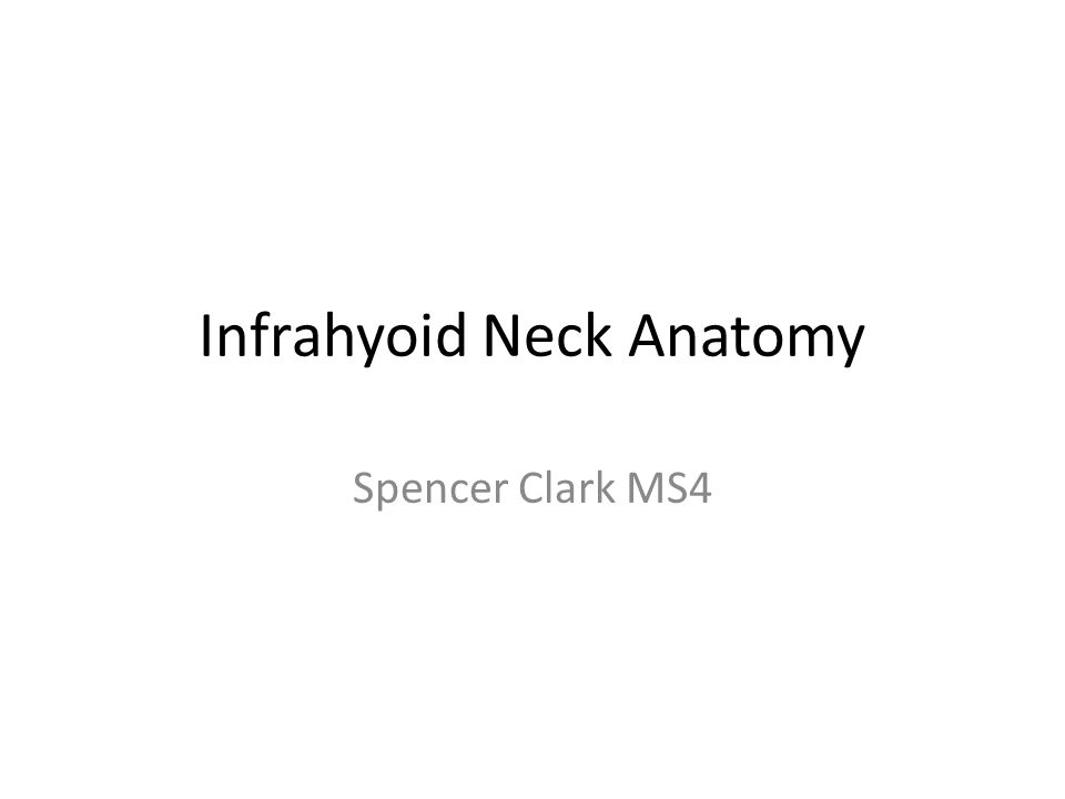 Infrahyoid Neck Below hyoid bone continuing into the mediastinum – Retropharyngeal Space – Perivertebral Space – Posterior Cervical Space – Carotid Space – Anterior Cervical Space – Visceral Space Hypopharynx-Larynx Thyroid Gland Parathryoid Glands