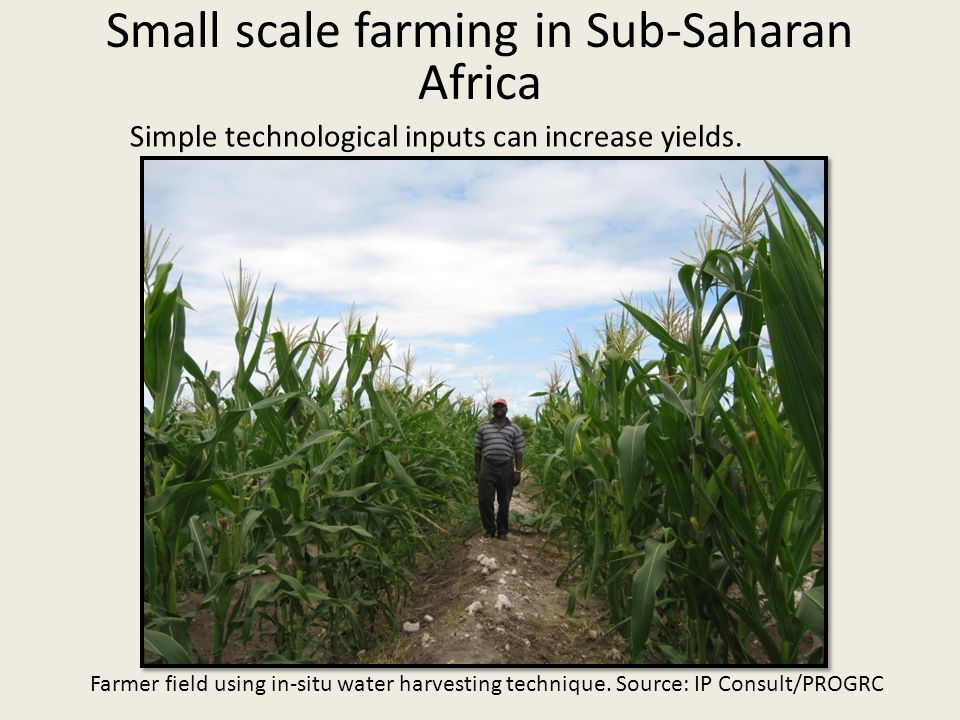 Simple technological inputs can increase yields.