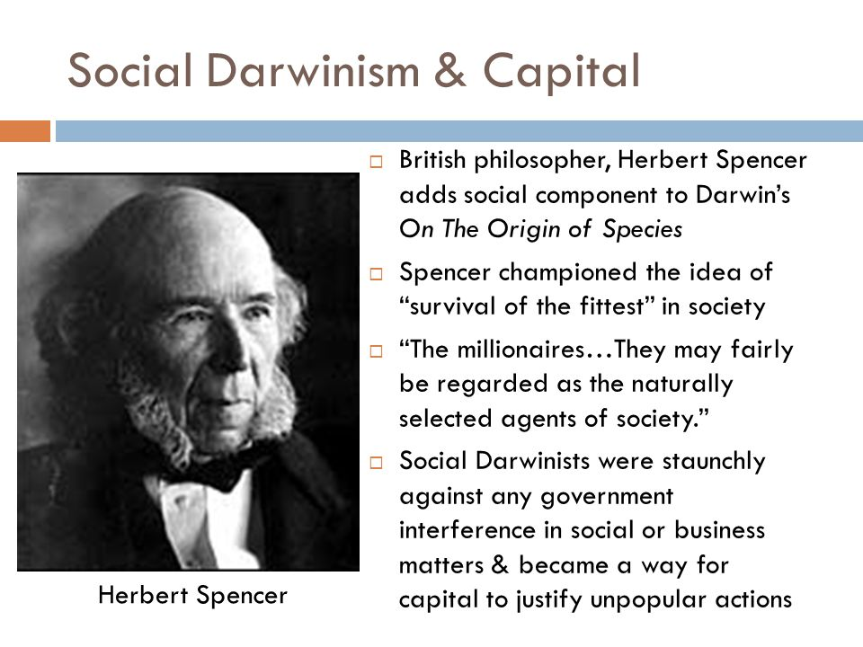 Social Darwinism & Capital  British philosopher, Herbert Spencer adds social component to Darwin's On The Origin of Species  Spencer championed the