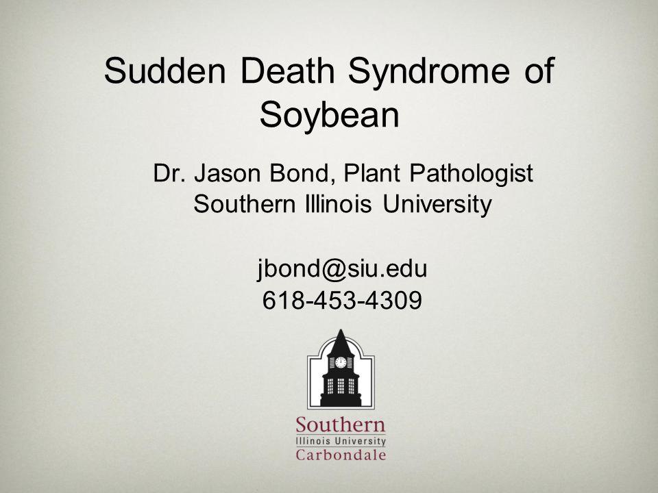 Sudden Death Syndrome of Soybean Dr. Jason Bond, Plant Pathologist Southern Illinois University jbond@siu.edu 618-453-4309