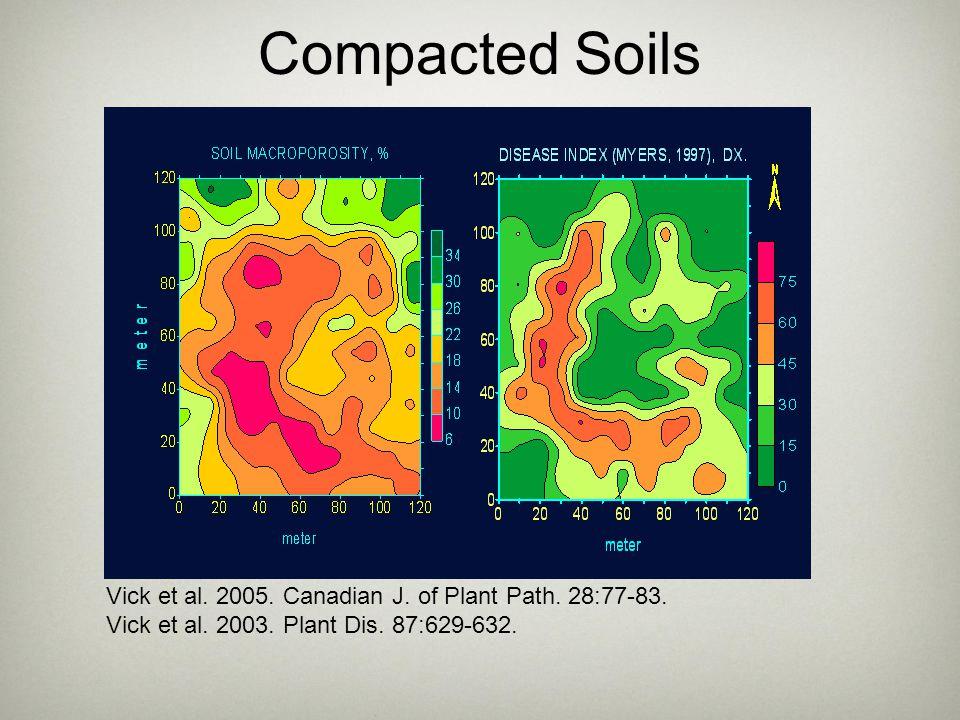 Compacted Soils Vick et al. 2005. Canadian J. of Plant Path. 28:77-83. Vick et al. 2003. Plant Dis. 87:629-632.