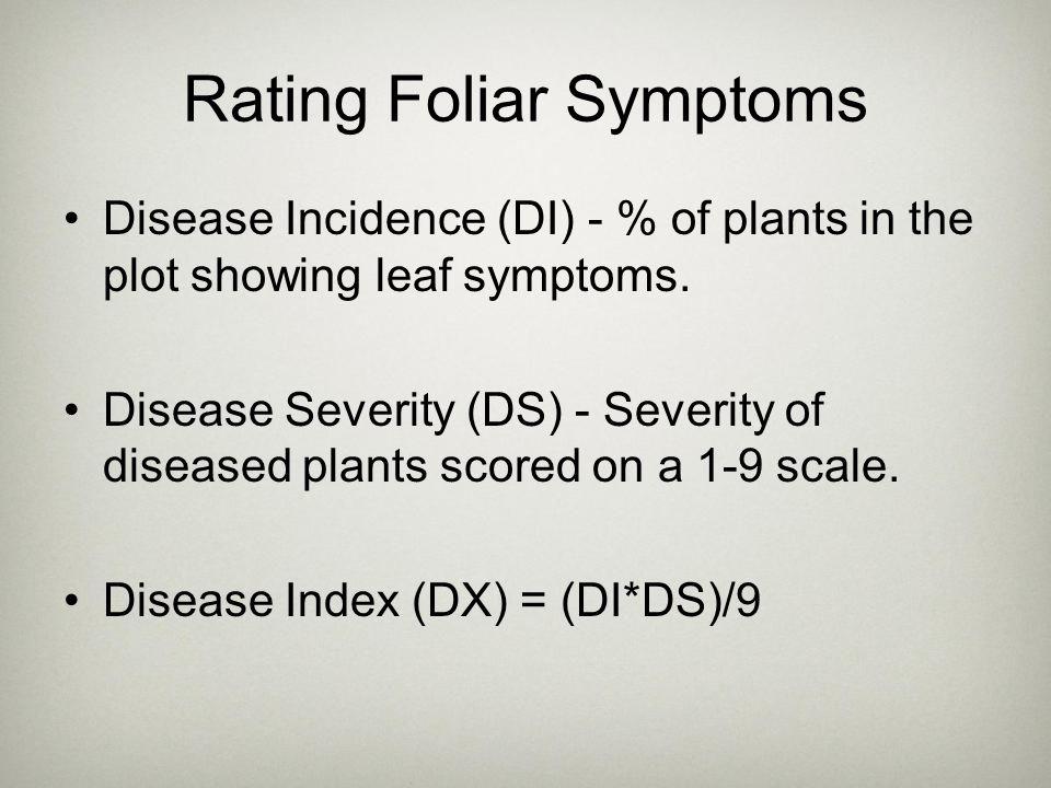 Rating Foliar Symptoms Disease Incidence (DI) - % of plants in the plot showing leaf symptoms. Disease Severity (DS) - Severity of diseased plants sco