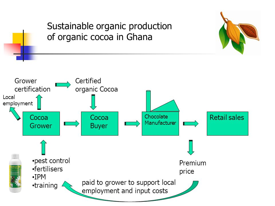 Cocoa Grower Cocoa Buyer Chocolate Manufacturer Retail sales pest control fertilisers IPM training Grower certification Certified organic Cocoa Premium price paid to grower to support local employment and input costs Local employment Sustainable organic production of organic cocoa in Ghana