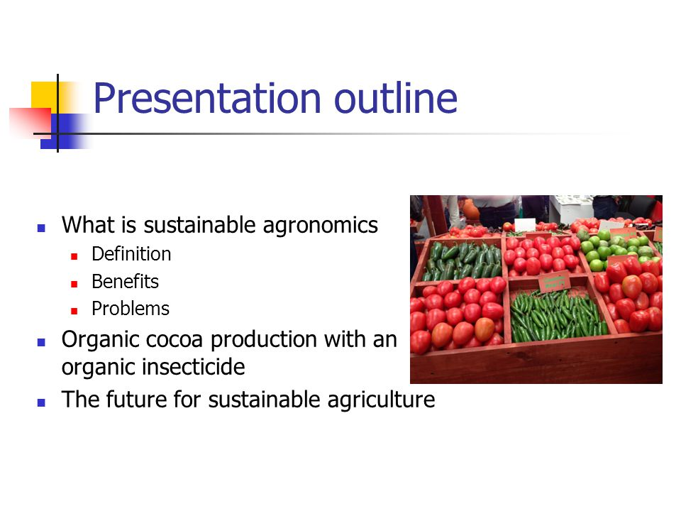 Presentation outline What is sustainable agronomics Definition Benefits Problems Organic cocoa production with an organic insecticide The future for sustainable agriculture