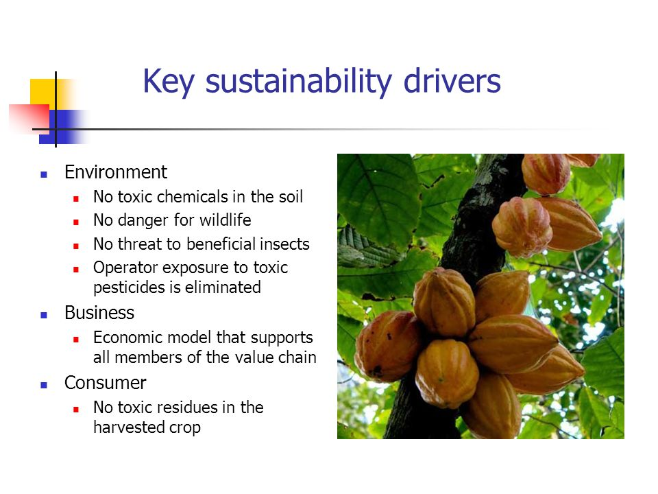 Key sustainability drivers Environment No toxic chemicals in the soil No danger for wildlife No threat to beneficial insects Operator exposure to toxic pesticides is eliminated Business Economic model that supports all members of the value chain Consumer No toxic residues in the harvested crop