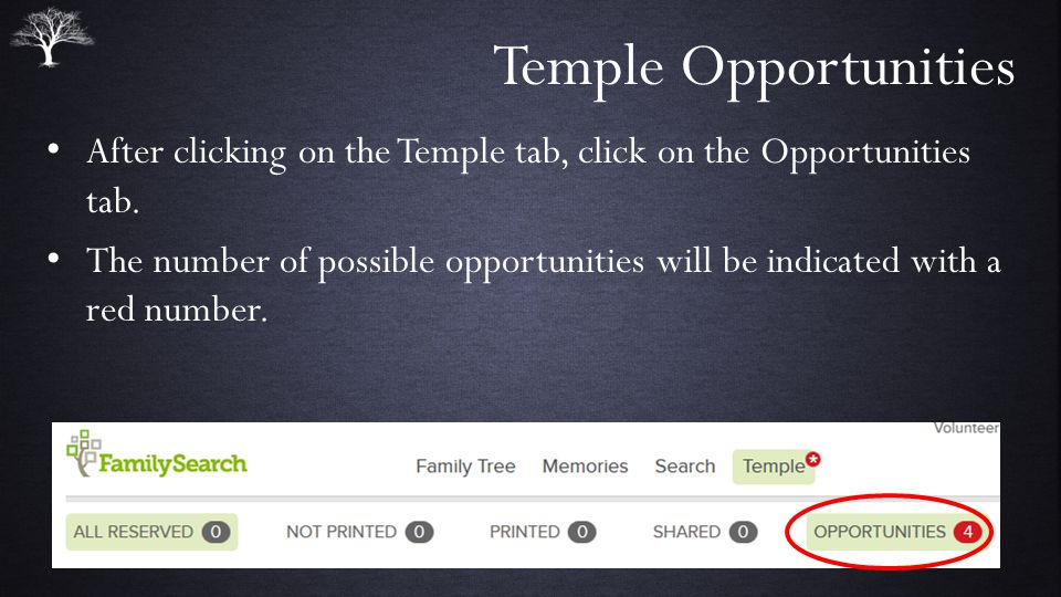 Temple Opportunities After clicking on the Temple tab, click on the Opportunities tab.