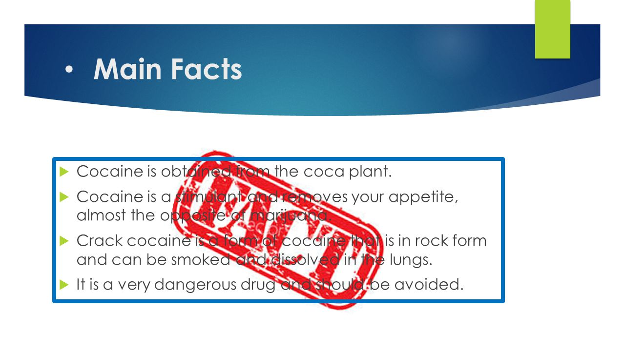 Main Facts  Cocaine is obtained from the coca plant.