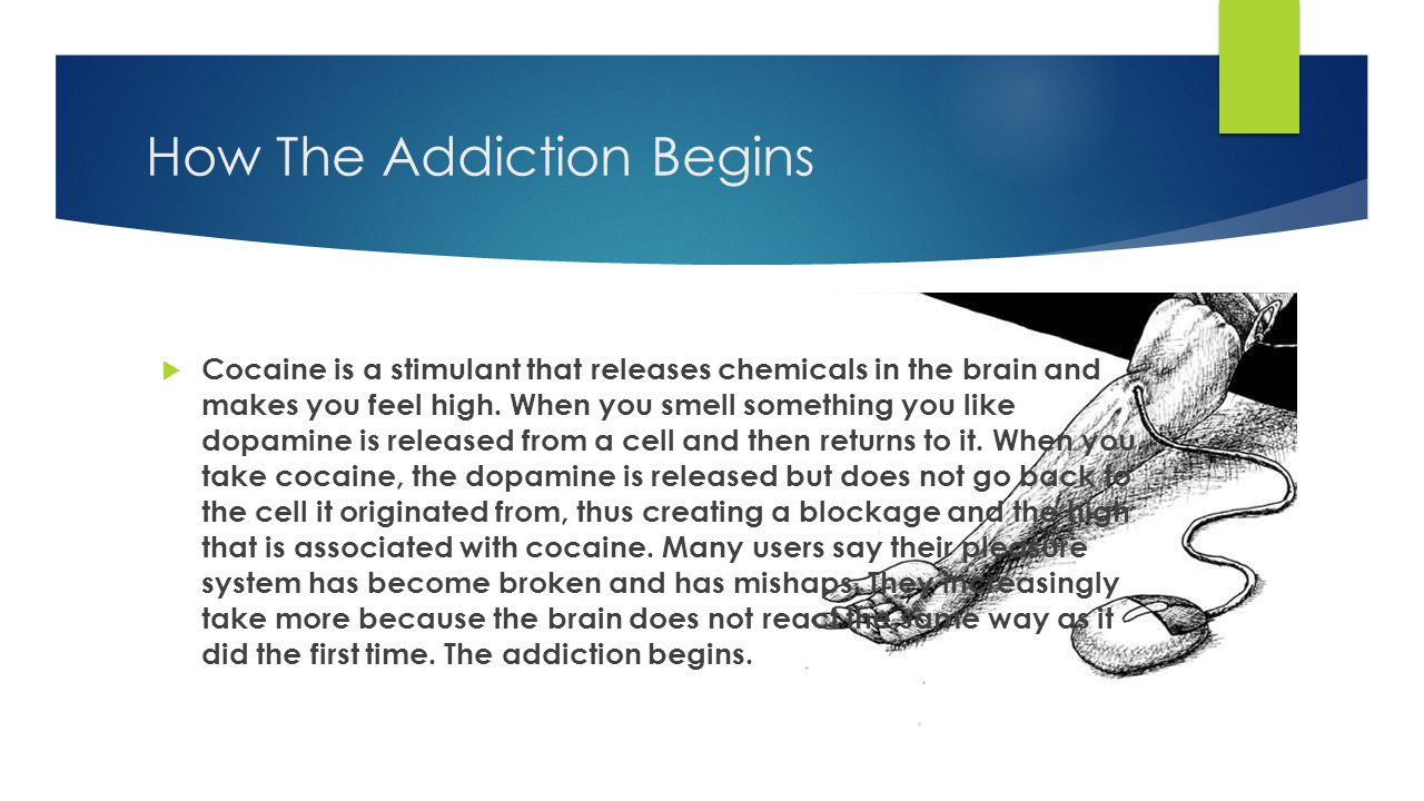 How The Addiction Begins  Cocaine is a stimulant that releases chemicals in the brain and makes you feel high.