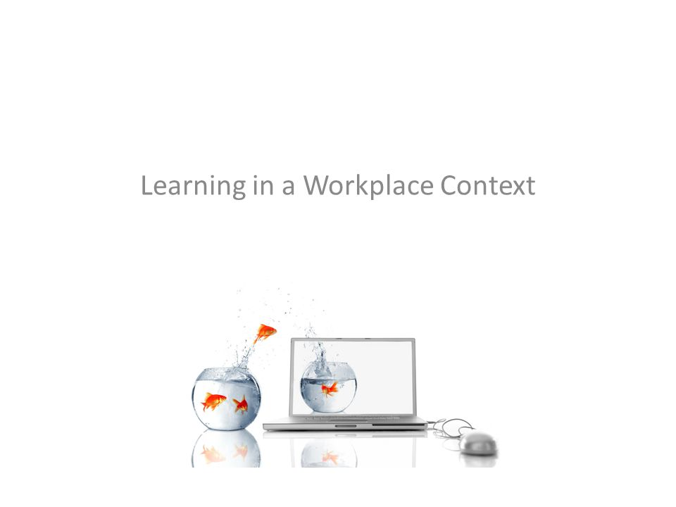 Learning in a Workplace Context