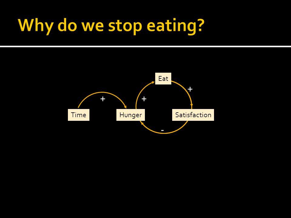 Eat SatisfactionHungerTime ++ + -