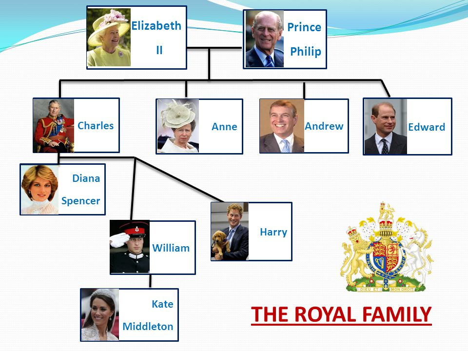 Harry William Diana Spencer Anne Charles Andrew Edward Elizabeth II Prince Philip Kate Middleton THE ROYAL FAMILY