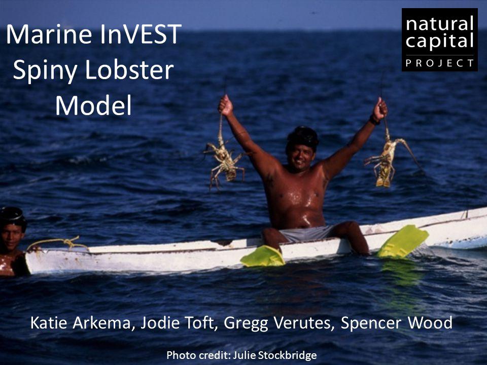 Marine InVEST Spiny Lobster Model Katie Arkema, Jodie Toft, Gregg Verutes, Spencer Wood Photo credit: Julie Stockbridge